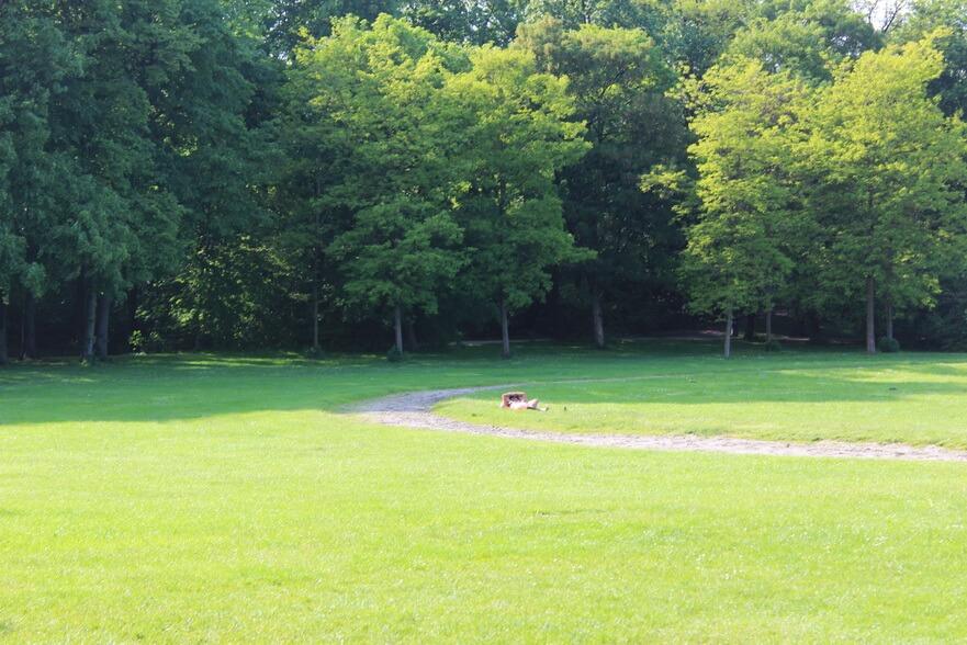 нудисты в английском парке мюнхена