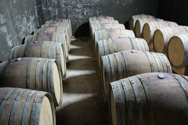 бочки с вином арени