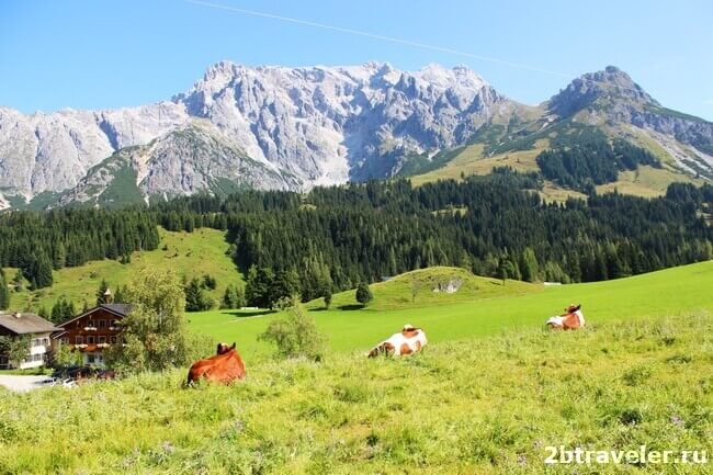 самые красивые места австрии