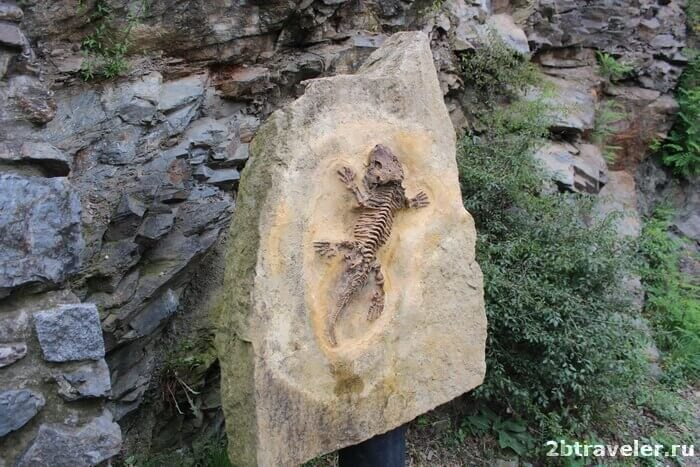 тропа окаменелостей прага
