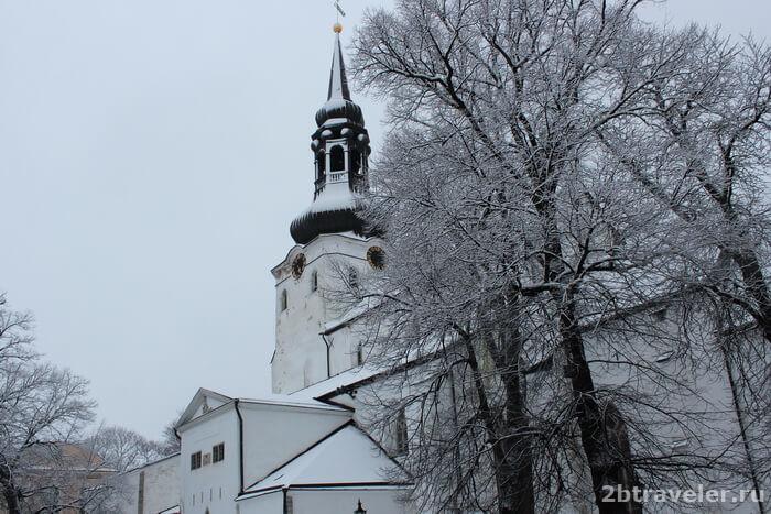 домский собор таллин