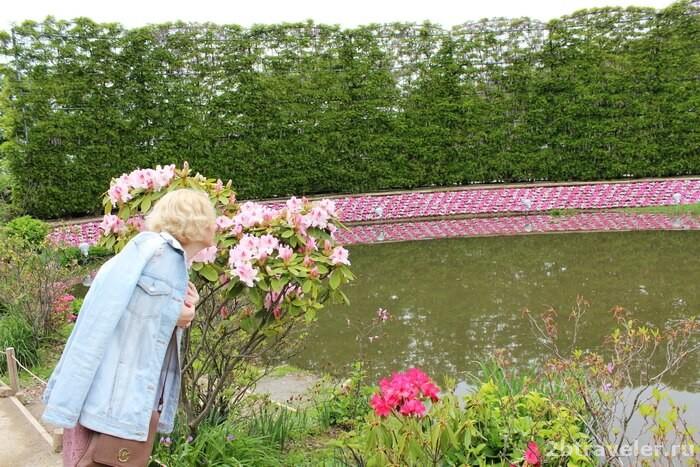 асикага цветочный парк
