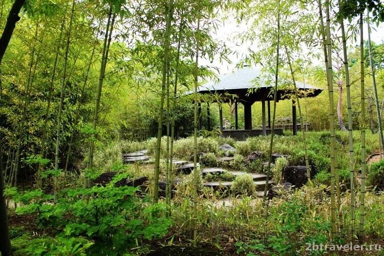 бамбуковый сад химедзи