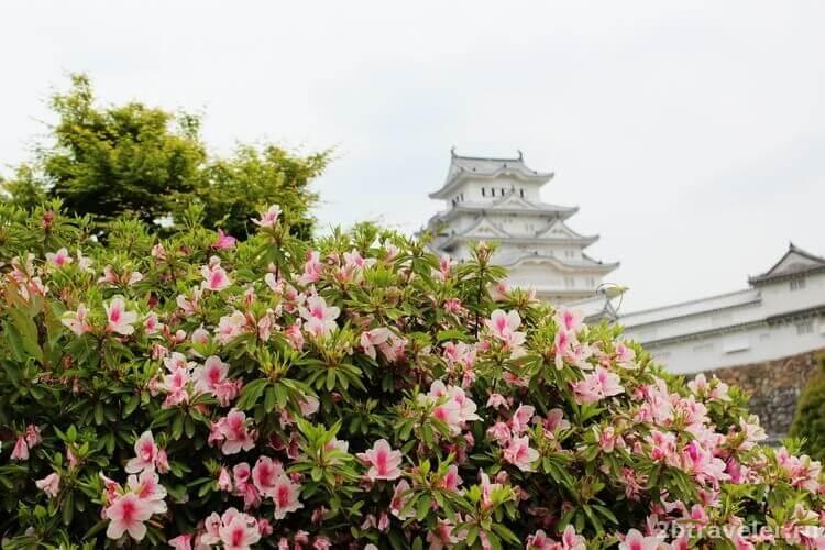 замок белой цапли япония