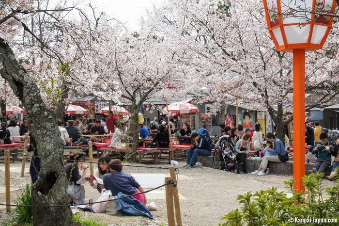 парк маруяма киото