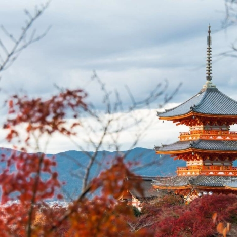 Kyoto for independent travellers: travel advices