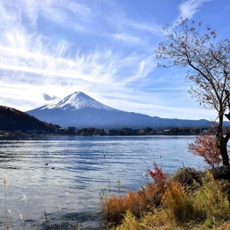 Himeji (Japan) and the White Heron Castle (Himeji Castle)