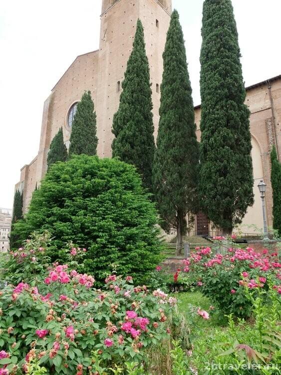 базилика святого доминика сиена