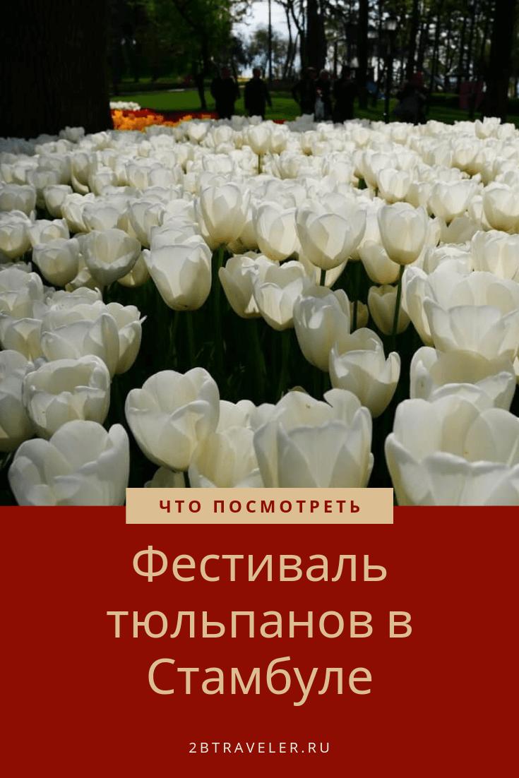 Фестиваль тюльпанов в Стамбуле | Блог Елены Казанцевой 2btraveler.ru