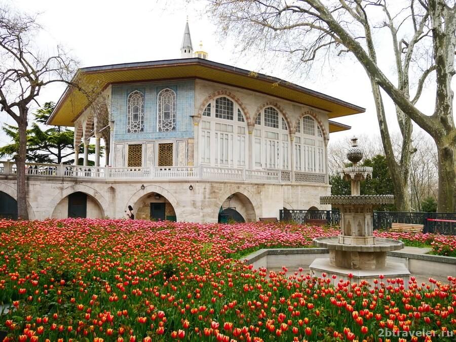 парки стамбула фестиваль тюльпанов