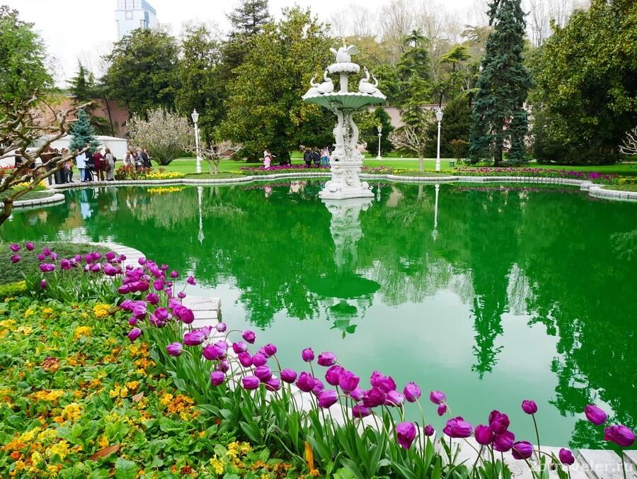 стамбул в апреле фестиваль тюльпанов
