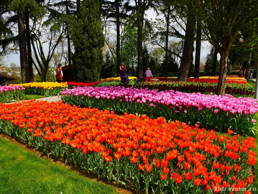 парк эмирган как добраться от султанахмета