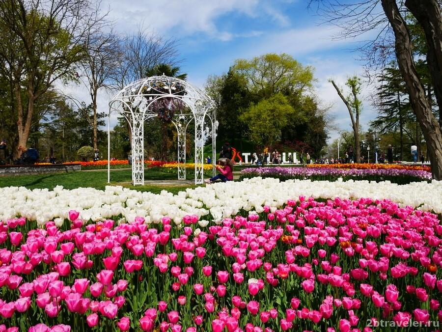 парк эмирган в стамбуле тюльпаны