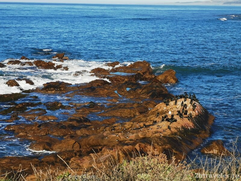 калифорния тихий океан