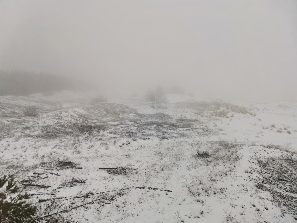 Калининград зимой что посмотреть за 3 дня